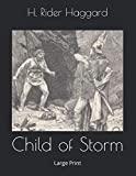 Child of Storm: Large Print