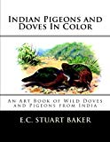 Indian Pigeons and Doves In Color: An Art Book of Wild Doves and Pigeons from India