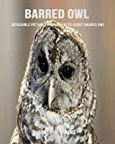 Barred Owl: Incredible Pictures and Fun Facts about Barred Owl