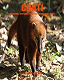 Coati: Incredible Pictures and Fun Facts about Coati