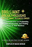 Brilliant Breakthroughs For The Small Business Owner: Fresh Perspectives on Profitability, P...