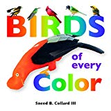 Birds of Every Color