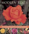 Modern Roses : An Illustrated Guide to Varieties, Cultivation and Care