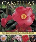 Camellias : An Illustrated Guide to Varieties, Cultivation and Care