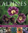 Alpines : An Illustrated Guide to Varieties, Cultivation and Care, with Step-by-step Instruc...