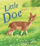 Little Doe (Meadowside Portrait)