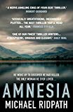 Amnesia: An 'ingenious' and 'twisting novel', perfect for fans of Peter Lovesey and William ...