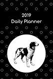 2019 Daily Planner: Brittany spaniel; agenda book