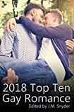 2018 Top Ten Gay Romance