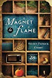 A Magnet to a Flame: A Collection of 28 Short Stories and 3 Poems
