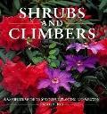 Shrubs & Climbers