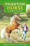 Phantom Horse - Comes Home: The Wild Palomino (Award Phantom Horse Books)