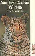 Bradt Southern African Wildlife A Visitor's Guide
