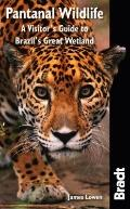 Pantanal Wildlife: A Visitor's Guide to Brazil's Great Wetland (Bradt Travel Guide)