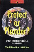 Protect or Plunder? Understanding Intellectual Property Rights
