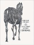 Anatomy of the Horse including a Particular Description of the bones, cartilages, muscles, f...