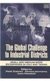 Global Challenge to Industrial Districts: Small and Medium-Sized Enterprises in Italy and Ta...