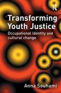Transforming Youth Justice Occupational Identity And Cultural Change