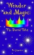Wonder And Magic The David Tales