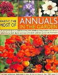 Making the Most of Annuals in the Garden