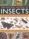 Natural History of Insects : A Guide to the World of Arthropods, Covering Many Insects Order...