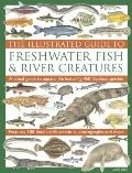 Illustrated Guide to Freshwater Fish and River Creatures : A visual guide to aquatic life fe...