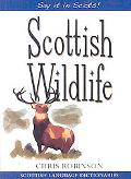 Scottish Wildlife