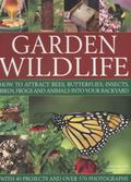 Garden Wildlife: How To Attract Bees, Butterflies, Insects, Birds, Frogs And Animals Into Yo...