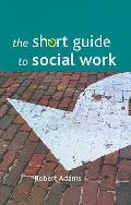 The Short Guide to Social Work (Short Guides To...)