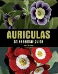 Auriculas : An Essential Guide