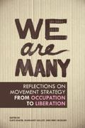 We Are Many : Critical Reflections on Movement Strategy from Occupation to Liberation