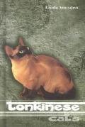 Tonkinese Cats
