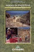 Walking in Palestine - Di Taylor - Paperback