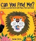 Can You Find Me? : A Hide-and-Seek Book with Flaps, Tabs and Slots
