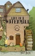 Life in a Watermill: A 3-dimensional Carousel Book