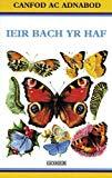 Ieir Bach Yr Haf (Cyfres Canfod Ac Adnabod) (Welsh Edition)
