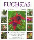 Fuchsias (New Plant Library Series) - Andrew Mikolajski - Hardcover