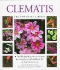 Clematis (New Plant Library Series)