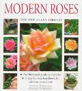 Modern Roses (New Plant Library Series)