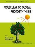 Molecular to Global Photosynthesis