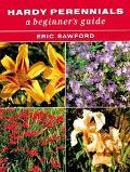 Hardy Perennials A Beginner's Guide