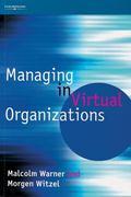 Managing in Virtual Organizations