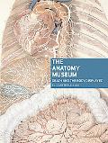 The Anatomy Museum: Death and the Body Displayed