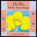 Hello Little Ducklings