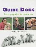 Guide Dogs From Puppies to Partners