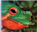 The very ordinary caterpillar