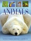 Encyclopedia of Animals - C. Colston Burrell - Hardcover - Bargain