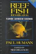 Reef Fish Identification Florida, Caribbean, Bahamas
