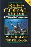 Reef Coral Identification Florida-Caribbean-Bahamas