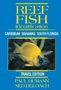 Reef Fish Identification Travel Edition : Caribbean Bahamas South Florida